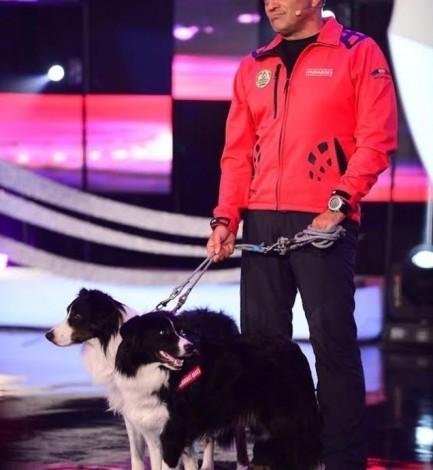 """Helios, câinele salvamont,  vedeta show-ului """"Ham talent"""""""