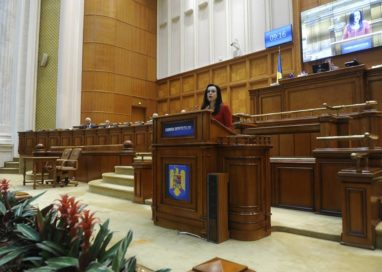 Simona Bucura Oprescu- Declaraţie politică privind Codul Administrativ