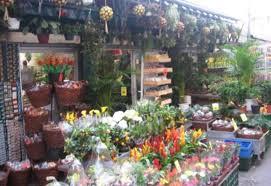 Amenzi pentru comercianţii de flori
