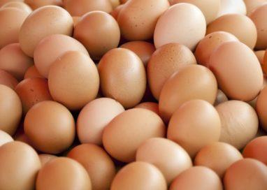 Preţul ouălor s-a calmat